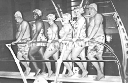 Photo of a group of swimmers posing on a diving board