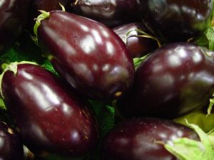 Eggplants - Improving the Odds for a Good Eggplant