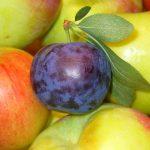 Cinnamon-Apple-Prune Jelly