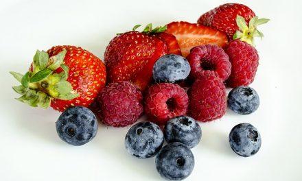 Sugar Free Summer Berry Jam