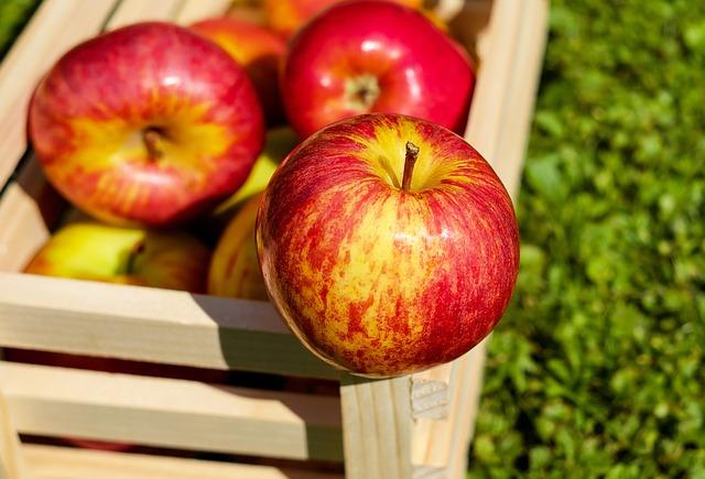 Apple and Peach Chutney Turkey Pattie Recipe Photo - Diabetic Gourmet Magazine Recipes
