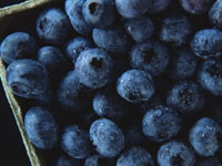 The Hidden Charms Of The Blueberry