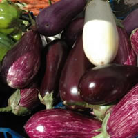 It's that Eggplant Time of Year