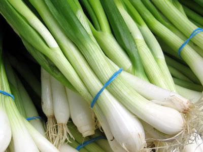Try Spring Onions at Their Peak