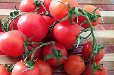 Solving the Summer Tomato Glut