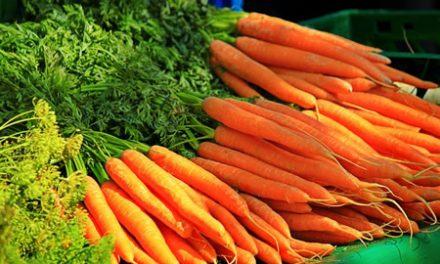 Your Summer Garden:  A Nutrition Smorgasbord