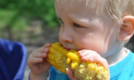 Raising Veggie-Eating Children