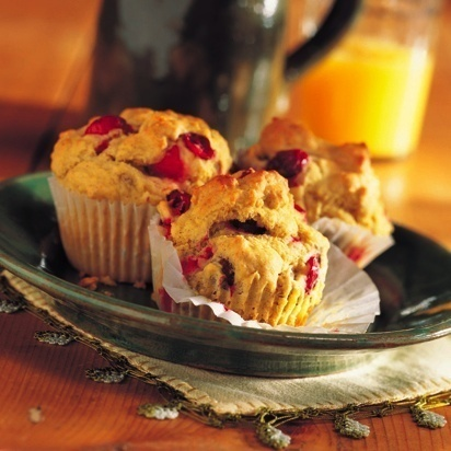 Cranberry Walnut Muffins Recipe Photo - Diabetic Gourmet Magazine Recipes